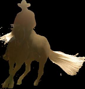 rider darren